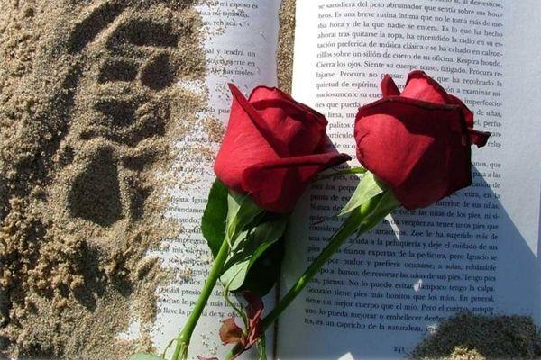 sant-jordi-rosas-libros
