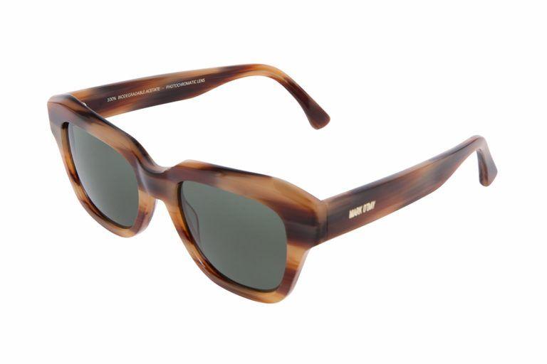 B0102 TURTLE stripe brown 3